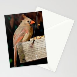 Seed drop Stationery Cards