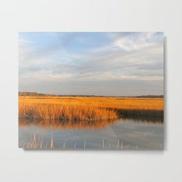 Golden Autumn Marsh, Coastal Ocean Landscape Metal Print