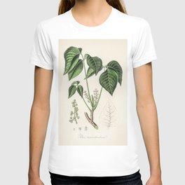 Poison ivy (Rhus toxicodendron)  from Medical Botany (1836) by John Stephenson and James Morss Churc T-shirt