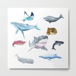 Ocean Friends Metal Print