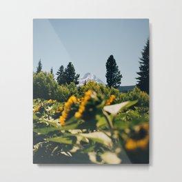 Mountain Sunflower Meadow Metal Print