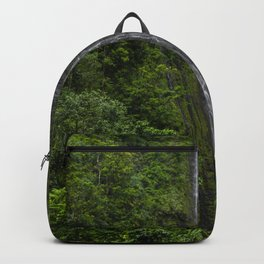 Stunning Plunging Waterfall Backpack