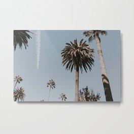 Palm Trees IV / Los Angeles, California Metal Print