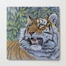Tiger 807 Metal Print