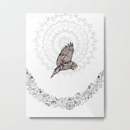 Owl Dreams Metal Print