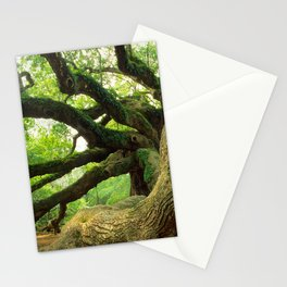 Angel Oak 3 Stationery Cards