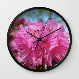 Rosy Rhododendron Flowers Wall Clock