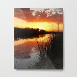 Bayou Dreaming Metal Print