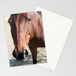 Nostrils Stationery Cards