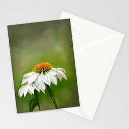 Little White Cone Flower Stationery Cards