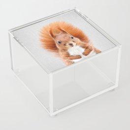 Squirrel 2 - Colorful Acrylic Box