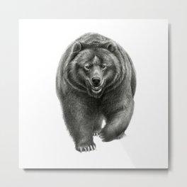 Brown Bear SK068 Metal Print