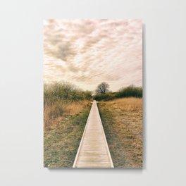 Take A Walk Metal Print