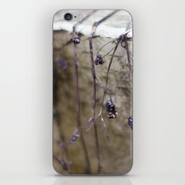 Whites & Purples iPhone Skin