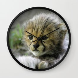 Cheetah_20150908_by_JAMFoto Wall Clock