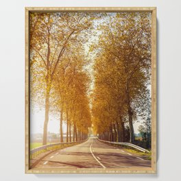 Sunset on strewn asphalt road with trees in autumn season Serving Tray