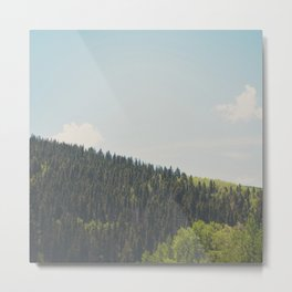above the tree line of the Santa Fe National Forest Metal Print