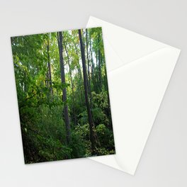 Splendor in the Woods Stationery Cards