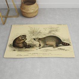 Naturalist Raccoons Rug