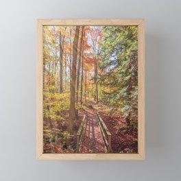 Forest Bridge Framed Mini Art Print