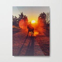 Sun and Dust - Horseback Rider - Richmond Virginia Metal Print