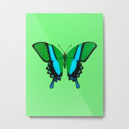 Swallowtail Butterfly in Green, Turquoise & Black Metal Print