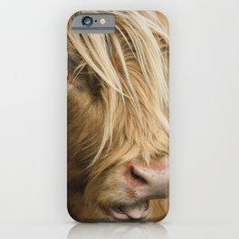 Highland Cow Portrait iPhone Case
