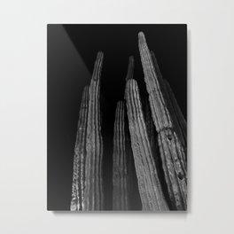 Cacti / cactus black/white Metal Print