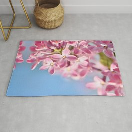 Lilac pink 039 Rug
