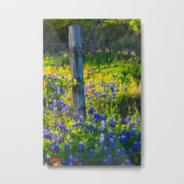 Country Living - Fence Post and Vines Among Bluebonnets and Indian Paintbrush Wildflowers Metal Print