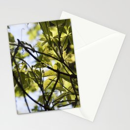 Leafy Green Stationery Cards