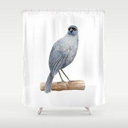 Kokako - a native New Zealand bird 2013 Shower Curtain