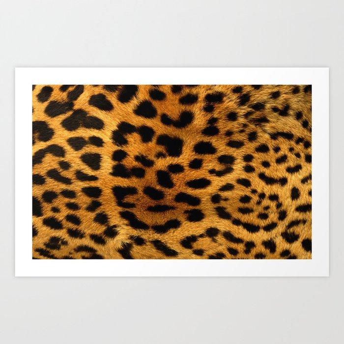 Trendy girly pattern wild safari animal Leopard Print Kunstdrucke