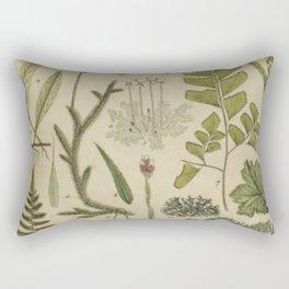 Ferns And Mosses Rectangular Pillow