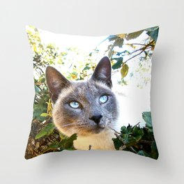 Siamese Cat in Tree Throw Pillow