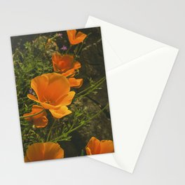 California Poppies 001 Stationery Cards