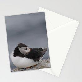 Sleeping Puffin | Farne Islands, UK | Fine art bird photography Stationery Cards