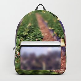 Strawberry Field Backpack