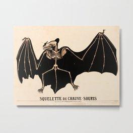 Vintage French zoological board - Bat skeleton Metal Print
