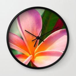 Pua Melia ke Aloha Pink Tropical Plumeria Maui Hawaii Wall Clock