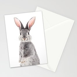 Baby Rabbit, Baby Animals Art Print By Synplus Stationery Cards