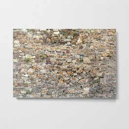 Stone Wall With Weeds Metal Print
