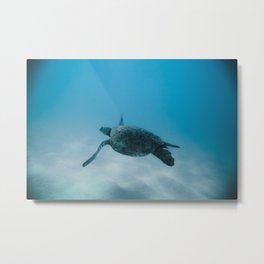 Turtle In The Sea Metal Print