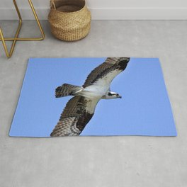 Watercolor Bird, Osprey 05, Janes Island, Maryland Rug