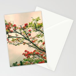 Pink flambloyant Stationery Cards