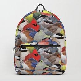 Fat backyard birds Backpack