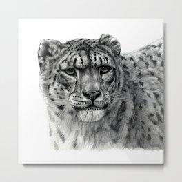 Snow Leopard G2010-003 Metal Print