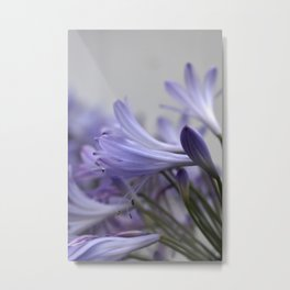 Lily of the Nile Ⅲ Metal Print