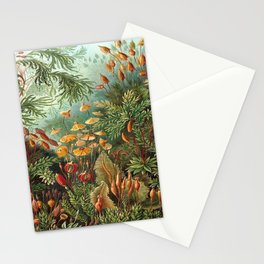 Ernst-haeckel-Kunstformen-der-Natur-viintage Stationery Cards