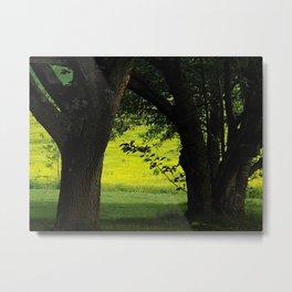 Between the Trees (in Color) Metal Print